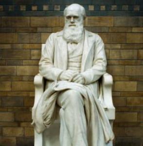 Charles Darwin statue at Natural History Museum